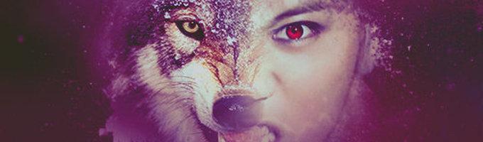 Fox Rain